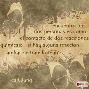 Carl Jung 14(2)