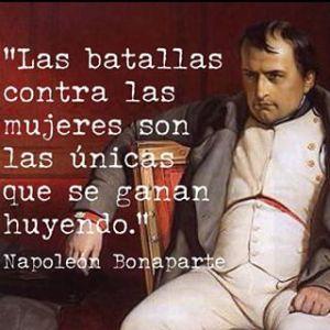 Napoleon 6