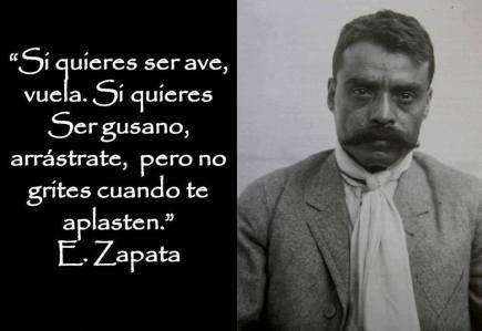 Zapata 1