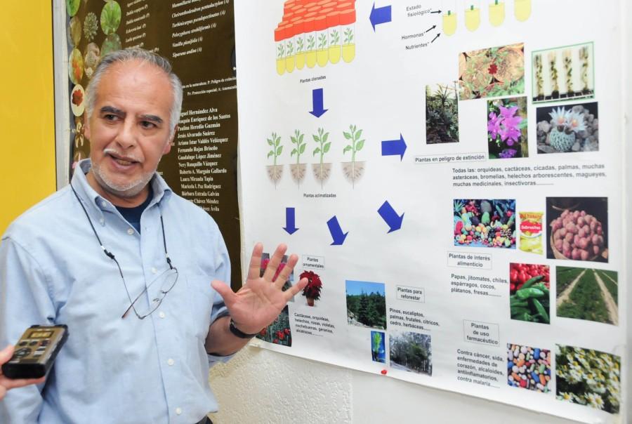 Víctor Manuel Chávez Ávila - Investigador del Instituto de Biología y responsable del Laboratorio de Cultivo de Tejidos Vegetales del Jardín Botánico de la UNAM.