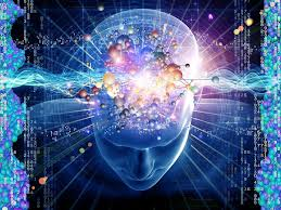 cognition cuantic