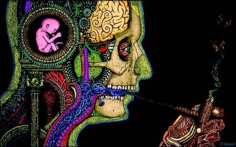 Experiencia psicodelica