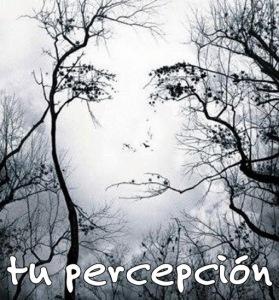 tu-percepción