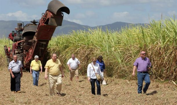 Imagen en http://www.elpais.cr/2015/04/21/agricultores-de-eeuu-ponen-sus-ojos-en-mercado-cubano-tras-deshielo/